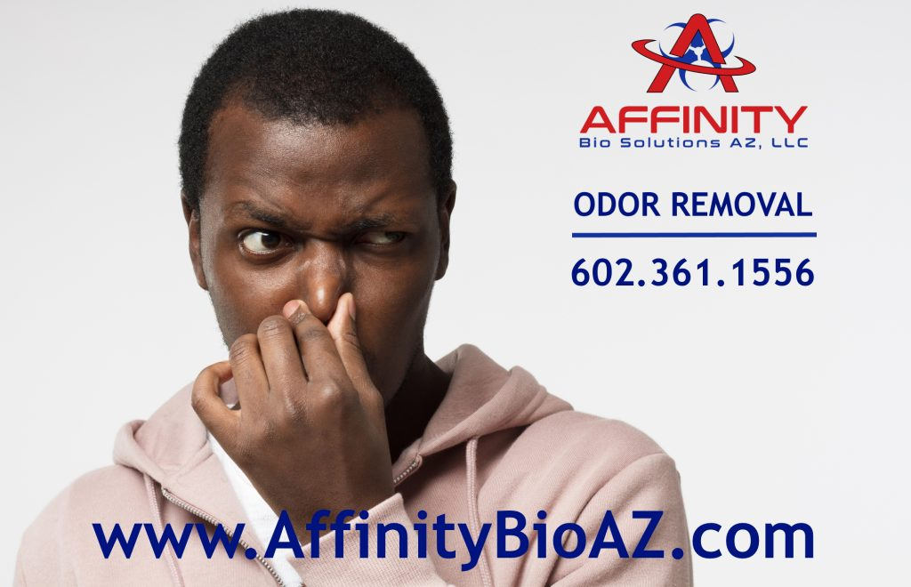 Phoenix Arizona Odor Removal Odor Remediation Homes Vehicles