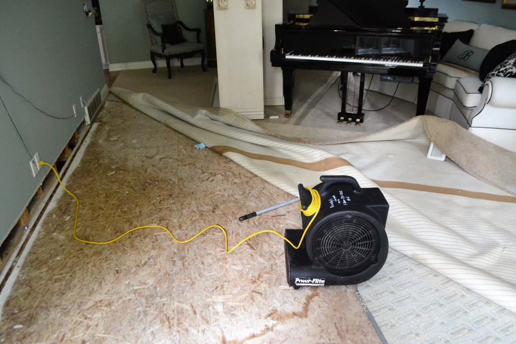 How Professionals Can Completely Dry Up Your Home After Water Damage